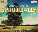 Picture of Growing Up Spiritually (CD)