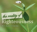 Picture of The Reality of Righteousness (CD Set)